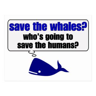 ¿Ahorre las ballenas? Postales