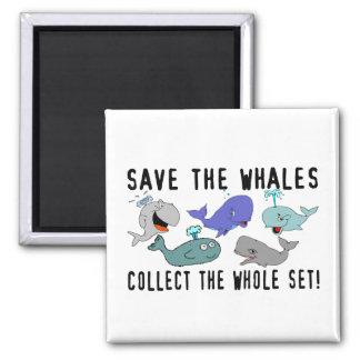 Ahorre las ballenas recogen el sistema del conjunt imán cuadrado