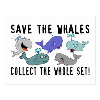 Ahorre las ballenas recogen el sistema del conjunt tarjeta postal