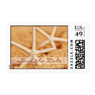 Ahorre las estrellas de mar de la fecha sellos