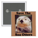 Ahorre las nutrias de mar pin