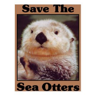Ahorre las nutrias de mar tarjetas postales