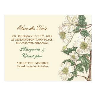 ahorre las postales elegantes de las flores blanca