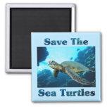 Ahorre las tortugas de mar imanes