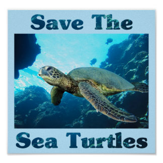 Ahorre las tortugas de mar póster