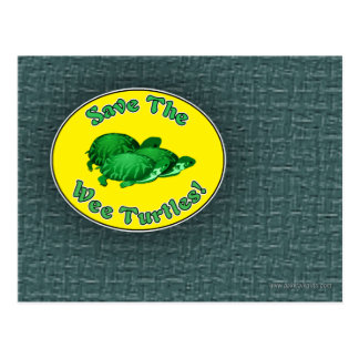 Ahorre las tortugas pequenitas postal