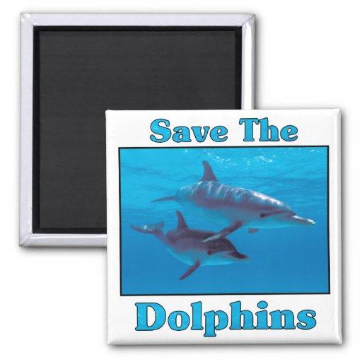 Ahorre los delfínes imán cuadrado