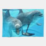 Ahorre los delfínes toallas de cocina
