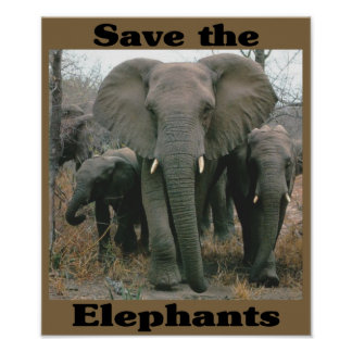 Ahorre los elefantes póster