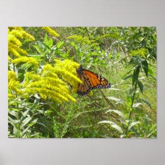 Ahorre los escombros de la barra la mariposa impresiones