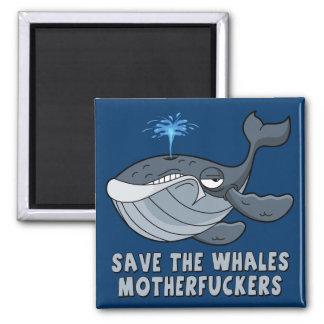 Ahorre los motherfuckers de las ballenas imán cuadrado