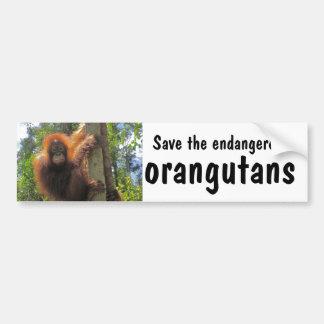 Ahorre los orangutanes en peligro pegatina de parachoque