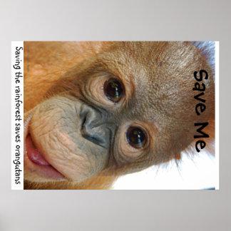 Ahorre los orangutanes y la selva tropical poster