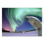 Ahorre los osos polares en peligro para el navidad felicitacion