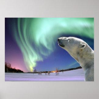 Ahorre los osos polares en peligro póster