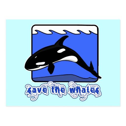 Ahorre los productos de las orcas de las ballenas tarjeta postal