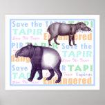 Ahorre los Tapirs americanos y asiáticos del Póster
