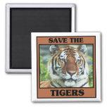 Ahorre los tigres iman de nevera