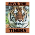Ahorre los tigres tarjeta postal