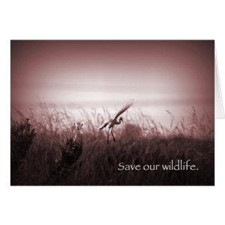 Ahorre nuestra fauna tarjeta