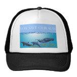 Ahorre nuestro gorra de los mares