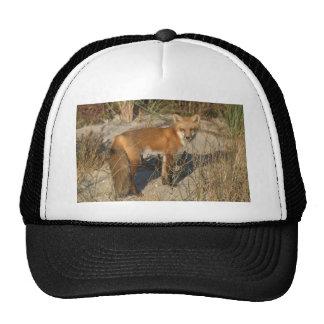 Ahorre nuestro gorra del vigilante del Fox del pla