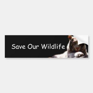 Ahorre nuestro tigre de la fauna etiqueta de parachoque