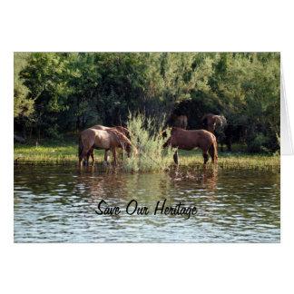 Ahorre nuestros caballos salvajes de la herencia tarjeta de felicitación
