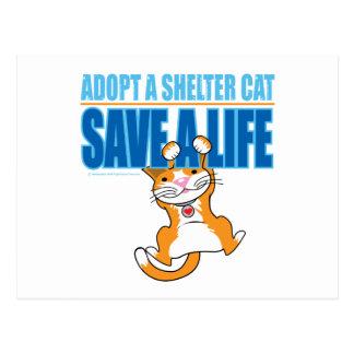 Ahorre un gato del refugio de la vida tarjeta postal