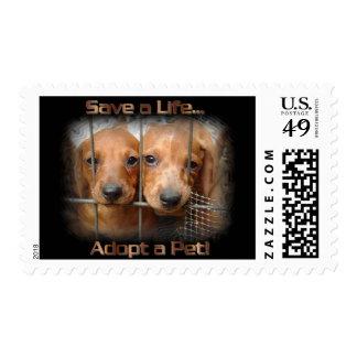 Ahorre una vida adoptan sellos del mascota