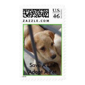 Ahorre una vida adoptan un sello del mascota
