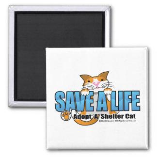 Ahorre una vida: Adopte un gato del refugio Imán Cuadrado