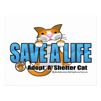 Ahorre una vida: Adopte un gato del refugio Tarjetas Postales
