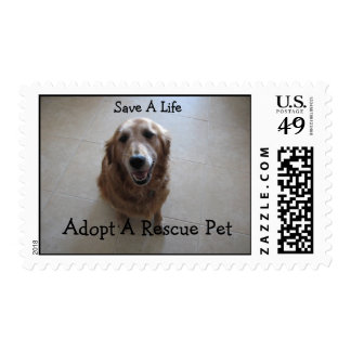 Ahorre una vida - rescate animal sello
