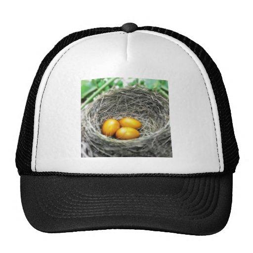 Ahorros de oro gorra