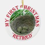 Ahorros del dinero ornamento para arbol de navidad