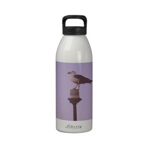 ¡Ahoy! ave marina en un faro Botella De Beber