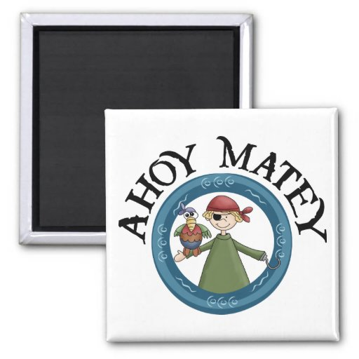Ahoy Matey Pirate with Parrot Magnet Refrigerator Magnets