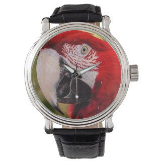 Ahoy Maties Wrist Watches