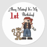 Ahoy Pirate First Birthday Tshirts and Gifts Sticker