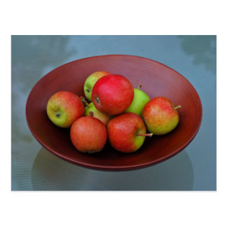 Ahrista Apples In Bowl Postcard