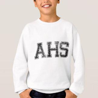 AHS High School - Vintage, Distressed Sweatshirt