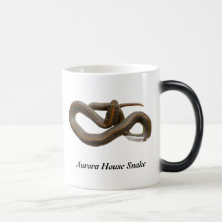 AHS Morphing Mug