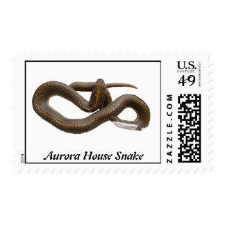 AHS Postage Stamp