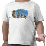 Ahu Akivi, Rapa Nui, isla de pascua, Chile 2 Camiseta