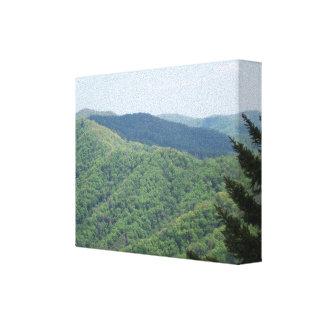 Ahumado de la escena de la montaña gran impresion en lona