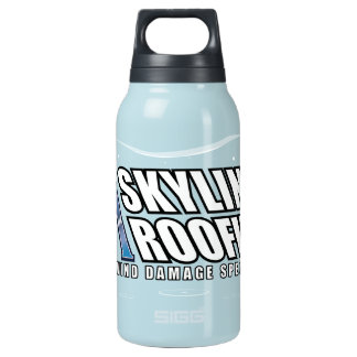 AI 1 10 OZ INSULATED SIGG THERMOS WATER BOTTLE