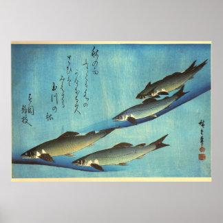 Ai (trucha) - impresión japonesa de los pescados