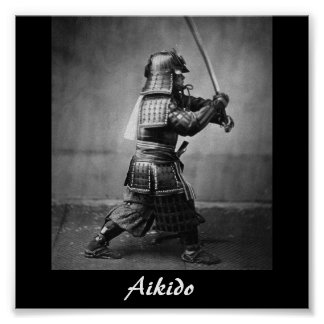 an overview of the japanese martial arts aikido As in other martial arts, the development of courtesy and respect is an integral part of aikido training the basic skills of aikido probably originated in japan in about the 14th century in the early 20th century they were systematized in their modern form through the work of the japanese martial-arts expert ueshiba morihei.