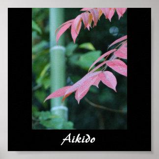 Aikido Japanese Martial Art Poster